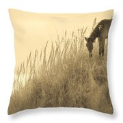 Wild Horse On The Outer Banks Throw Pillow
