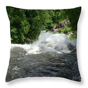 Wild Water Throw Pillow