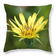 Wildflower Named Yellow Salsify Throw Pillow