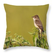 Willow Flycatcher Throw Pillow