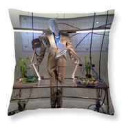 Window Art Throw Pillow