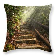 Window Of Heaven Throw Pillow