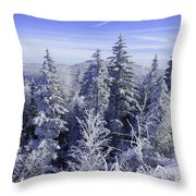 Winter Along The Highland Scenic Highway Throw Pillow