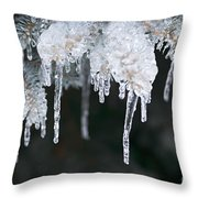 Winter Branches In Ice Throw Pillow