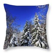 Winter Forest Under Snow Throw Pillow