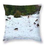 Winter Grazing Throw Pillow