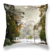 Winter In Autumn Throw Pillow