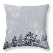 Winter In Pike National Forest Throw Pillow