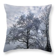 Winter Lace Throw Pillow