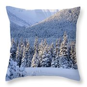 Winter Scenic Of Snowcovered Spruce Throw Pillow