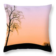 Winter Sunset Tree Throw Pillow