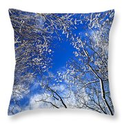 Winter Trees And Blue Sky Throw Pillow