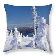 Winter View Of Snow Covered Trees Throw Pillow