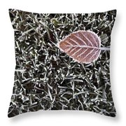 Winter With Frosted Leaf On Frozen Grass Throw Pillow