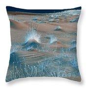 Winters Dunes IIa Throw Pillow