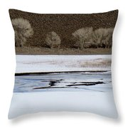 Winterscape No. 2 Throw Pillow