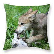 Wolf Pup Throw Pillow