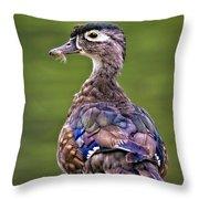 Wood Duck Juvenile Throw Pillow
