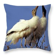 Wood Stork Courtship Display Throw Pillow