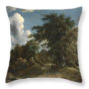 Woodland Road Throw Pillow
