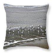 Yachats Oregon Throw Pillow