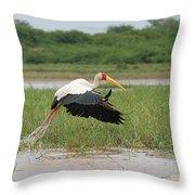 Yellow-billed Stork Mycteria Ibis Throw Pillow