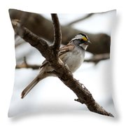 Yellow Crowned Sparrow Throw Pillow