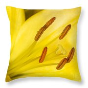 Yellow Flower Throw Pillow