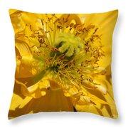 Yellow Iceland Poppy Throw Pillow