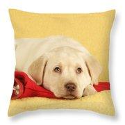 Yellow Labrador Puppy Throw Pillow