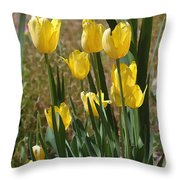 Yellow Tulips At The Arboretum Throw Pillow