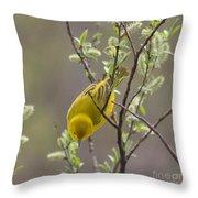 Yellow Warbler -1 Throw Pillow