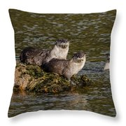 Yellowstone Otters Throw Pillow