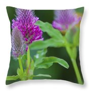 Young Delphinium Throw Pillow