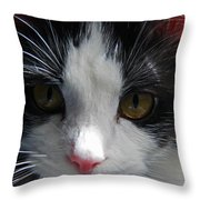Yue Up Close Throw Pillow