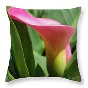 Zantedeschia Named Majestic Red Throw Pillow