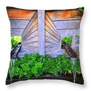 Zen Garden Fountain  Throw Pillow