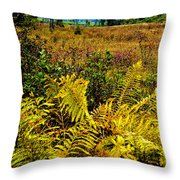 Cranberry Glades Botanical Area Throw Pillow