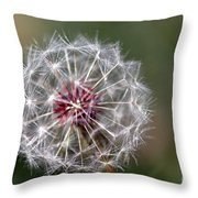 Dandelion Seed Head Throw Pillow