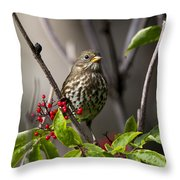Fox Sparrow Throw Pillow