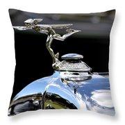 Hillsborough Concourse Throw Pillow