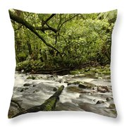 Jungle Stream Throw Pillow