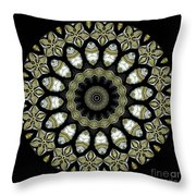 Kaleidoscope Ernst Haeckl Sea Life Series Throw Pillow