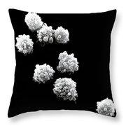 Lymphocytes Undergoing Apoptosis, Sem Throw Pillow