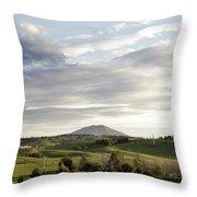 New Zealand Throw Pillow