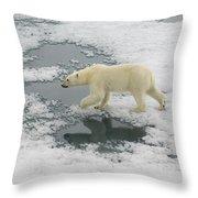 Polar Bear Crossing Ice Floe Throw Pillow