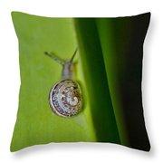Snail On Leaf Throw Pillow