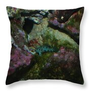 Tropical Fish Throw Pillow