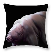 Water Bear Tardigrades Throw Pillow