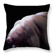 Water Bear Tardigrades Throw Pillow